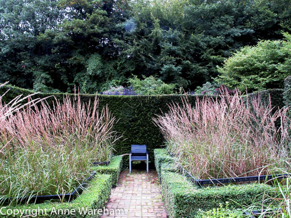 Cornfield garden, Veddw, garden South Wales copyright Anne Wareham