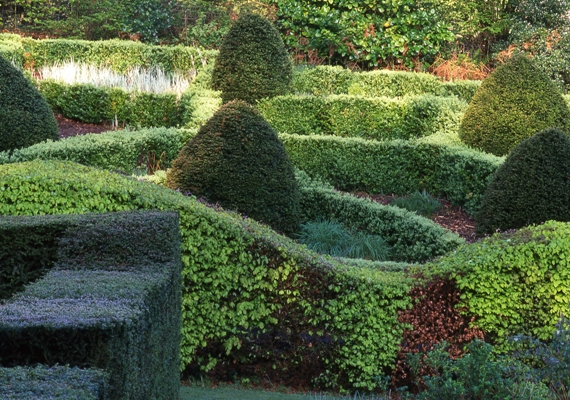 Grasses Parterre at Veddw copyright Charles Hawes