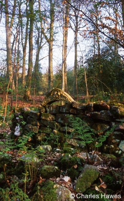 Ruin in the wood at Veddw, copyright Charles Hawes