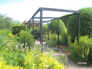 Pergola at Veddw copyright Anne Wareham