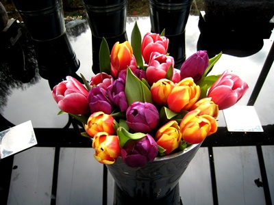 Post image for Why do I like a mixed vase of tulips?