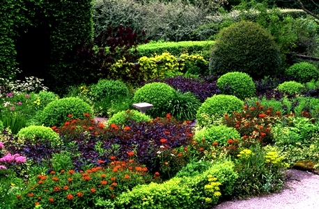 Front garden, Veddw copyright Charles Hawes