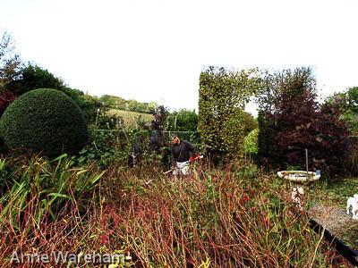 Front garden cutting down S 2 Veddw, Copyright Anne Wareham