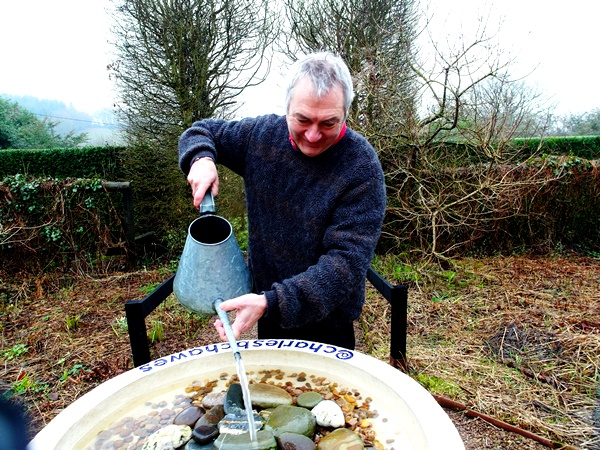 Bird Bath End of March 2014 Veddw Copyright Anne Wareham 013