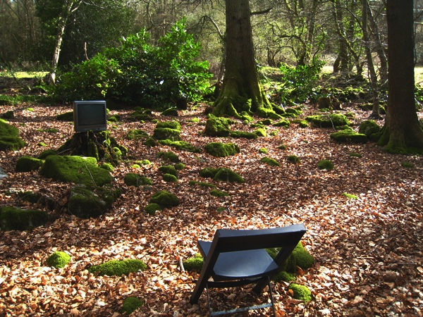 Television in the Woods at  Veddw, Copyright Anne Wareham