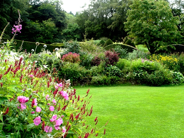 Crescent Border  Early August Veddw Copyright Anne Wareham 008