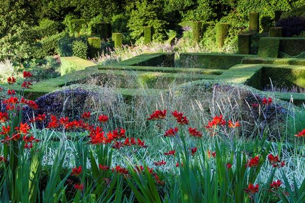 ???????????????/Crocosmia-Veddw_House_Garden_August_13-1-Copyright-Charles-Hawes.
