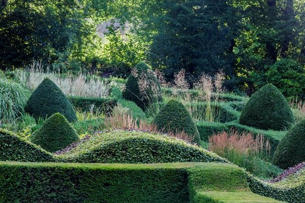 ??????????????Grasses-Veddw_House_Garden_August_13-46-Copyright-Charles-Hawes.
