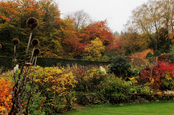 autumn-crescent-border-veddw-copyright-anne-wareham-
